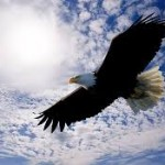 Are You Ready To Soar Like An Eagle?